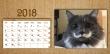 Asztali naptár 12 lapos