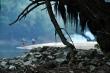 Baja Duna 005 Fotódekoráció 45x30cm