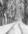 Téli Utakon 60x70 cm Fotódekoráció